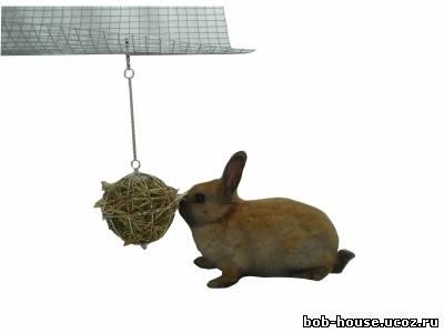Кормушка для декоративного кролика своими руками 54